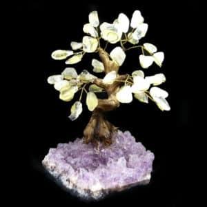 Árvore De Cristal de Quartzo com Base de Ametista 18 Galhos