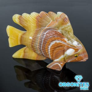 Peixe Ônix Amarelo e Sardônia 770g